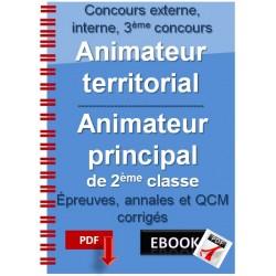 Animateur territorial, animateur principal de 2ème classe